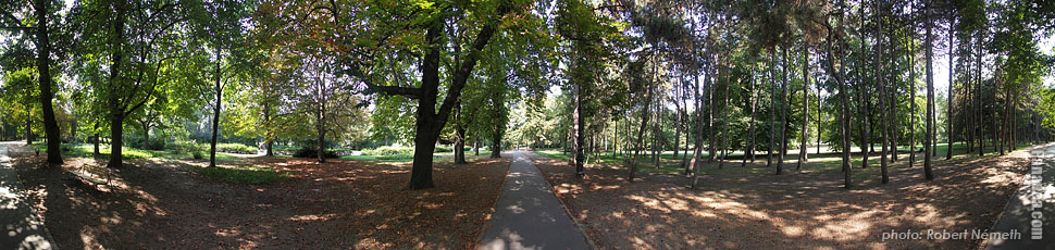 Margaret Island (Margit-sziget), Shady mall - Budapest, Hungary - Panorama photo (panoramic image)