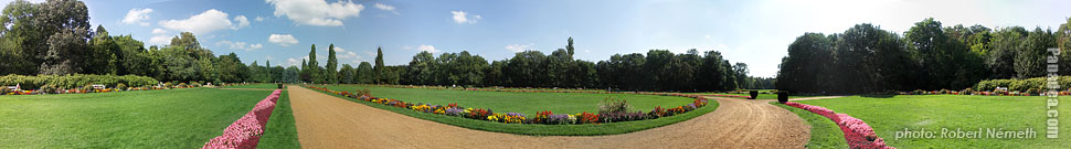 Margaret Island (Margit-sziget), Meadow - Budapest, Hungary - Panorama photo (panoramic image)