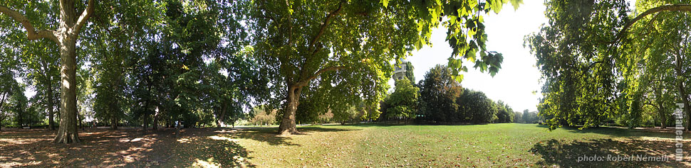 Margaret Island (Margit-sziget), Meadow near the water tower - Budapest, Hungary - Panorama photo (panoramic image)