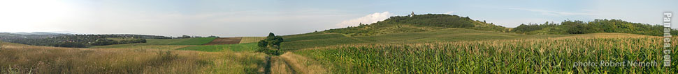 Somlyó Hill (Gyertyános) - Mogyoród, Hungary - Panorama photo (panoramic image)