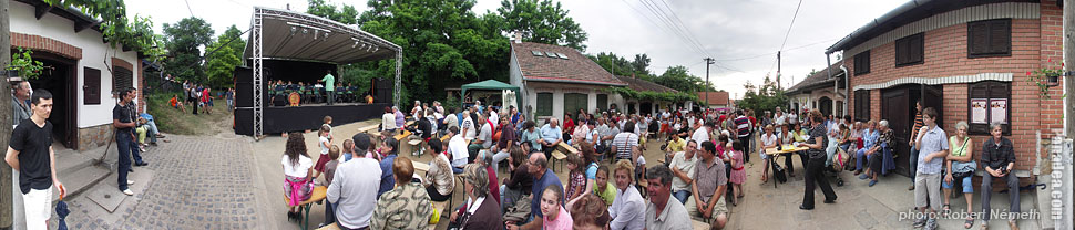 Somlói Way, Wine festival - Mogyoród, Hungary - Panorama photo (panoramic image)